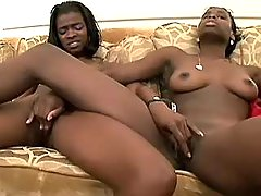 Lesbian sistas caress each other